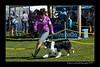 DSC_0322-12x18-06_2014-DogShow-W