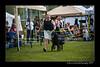 DSC_2132-12x18-06_2014-DogShow-W