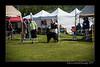 DSC_1822-12x18-06_2014-DogShow-W