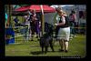 DSC_1830-12x18-06_2014-DogShow-W