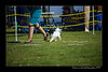 DSC_0725-12x18-06_2014-DogShow-W
