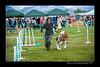 DSC_3821-12x18-07_2014-Dog_Show-W
