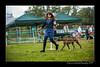 DSC_6336-12x18-07_2014-Dog_Show-W