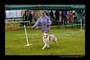 DSC_0788-12x18-07_2014-Dog_Show-W