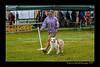 DSC_0789-12x18-07_2014-Dog_Show-W