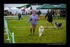 DSC_0798-12x18-07_2014-Dog_Show-W