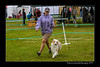 DSC_0790-12x18-07_2014-Dog_Show-W