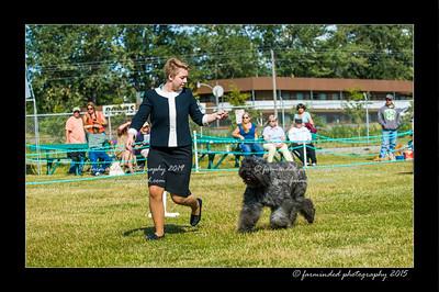 DSC_0038-12x18-07_2015-Dog_Show-W