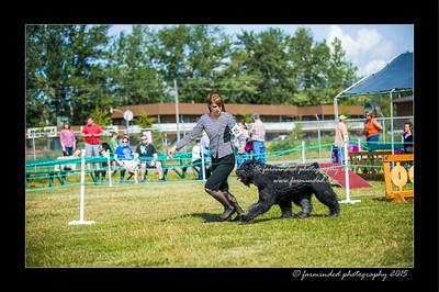 DSC_0125-12x18-07_2015-Dog_Show-W