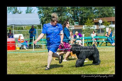 DSC_0058-12x18-07_2015-Dog_Show-W