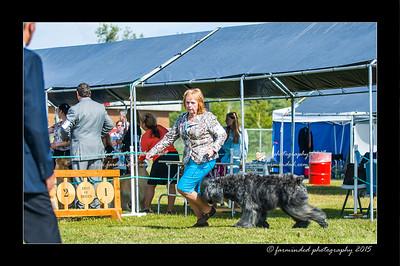 DSC_0081-12x18-07_2015-Dog_Show-W
