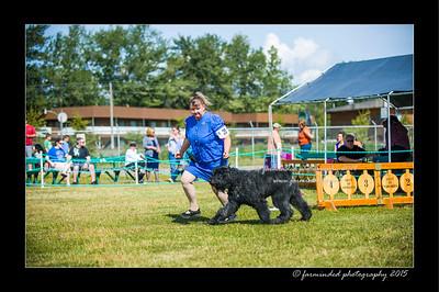 DSC_0127-12x18-07_2015-Dog_Show-W
