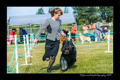 DSC_0007-12x18-07_2015-Dog_Show-W