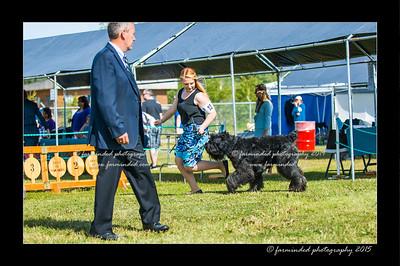DSC_0088-12x18-07_2015-Dog_Show-W