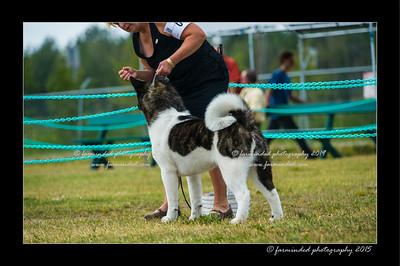 DSC_1019-12x18-07_2015-Dog_Show-W