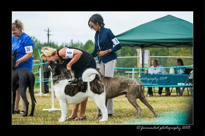 DSC_1040-12x18-07_2015-Dog_Show-W