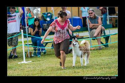 DSC_0872-12x18-07_2015-Dog_Show-W