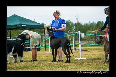 DSC_1035-12x18-07_2015-Dog_Show-W