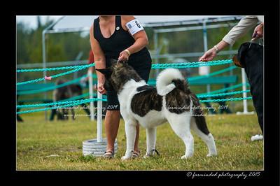 DSC_1008-12x18-07_2015-Dog_Show-W