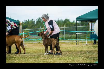 DSC_1005-12x18-07_2015-Dog_Show-W