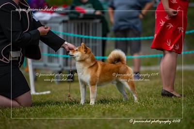D75_4813-12x18-Dog_Show-W