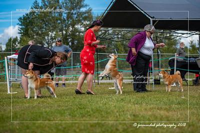 D75_4802-12x18-Dog_Show-W