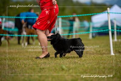 D75_4736-12x18-Dog_Show-W