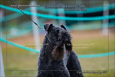 DS5_9990-12x18-07_2019-CIKC-Dog_Show-W