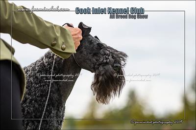 DS5_0017-12x18-07_2019-CIKC-Dog_Show-W