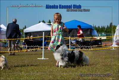 DS5_7130-12x18-06_2019-AKC Dog Show-W