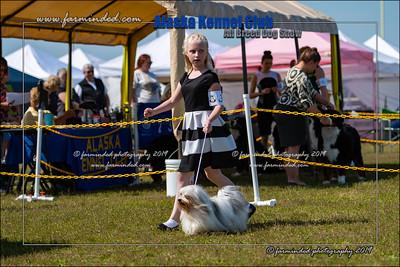DS5_7164-12x18-06_2019-AKC Dog Show-W