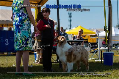DS5_7166-12x18-06_2019-AKC Dog Show-W