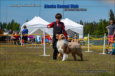 DS5_7170-12x18-06_2019-AKC Dog Show-W