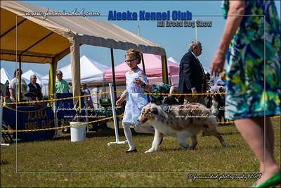 DS5_7209-12x18-06_2019-AKC Dog Show-W