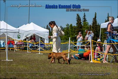 DS5_7232-12x18-06_2019-AKC Dog Show-W