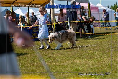 DS5_7154-12x18-06_2019-AKC Dog Show-W