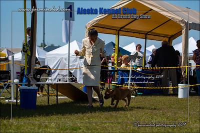 DS5_7235-12x18-06_2019-AKC Dog Show-W