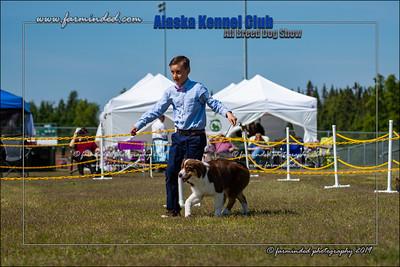 DS5_7193-12x18-06_2019-AKC Dog Show-W