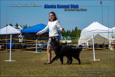 DS5_7127-12x18-06_2019-AKC Dog Show-W