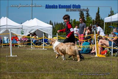 DS5_7178-12x18-06_2019-AKC Dog Show-W