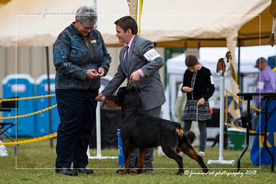 DS5_6782-12x18-06_2018-Dog Show- AKC-Day 2-W