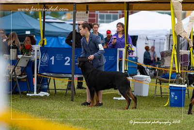 DS5_6750-12x18-06_2018-Dog Show- AKC-Day 2-W