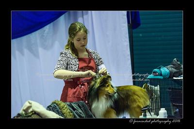 DSC_2389-12x18-01_2016-Dog_Show-W