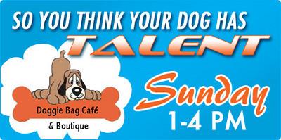 Doggie Bag Café Talent Search