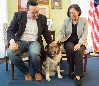 Sen. Mazie Hirono, D-Hawaii, and staffer Anthony's dog, Beacon. Beacon was adopted a few years ago when he caught his dad's eye while he was accompanying D.C. Council member Mary Cheh on a tour of the New York Avenue Adoption Center. (Courtesy Humane Rescue Alliance)