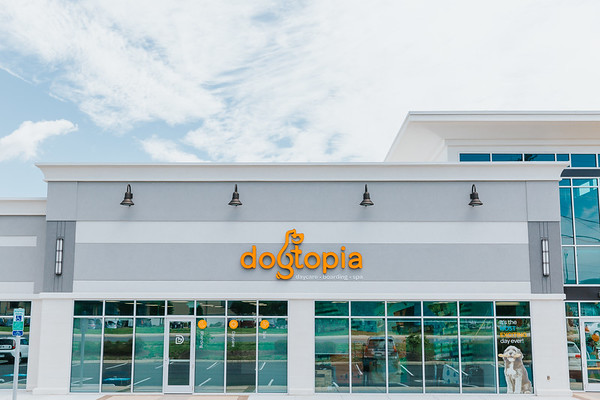 Dogtopia Grand Opening