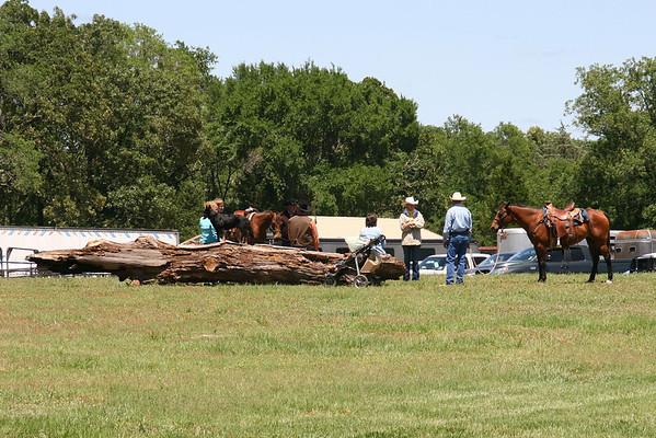 Doris Day Horse Rescue and Adoption Center