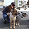 Dracut Open Space Committee holds 6th annual birthday walk to celebrate the 318th anniversary of Dracut's separation from the town of Chelmsford on Feb 26, 1701, ending with refreshments on Brentwood Drive. Checka Antifonario of Dracut with her dogs Baci, left, and Banjo. (SUN Julia Malakie)