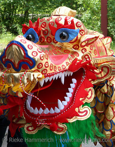 dragon-dance - the colorful dragon-head