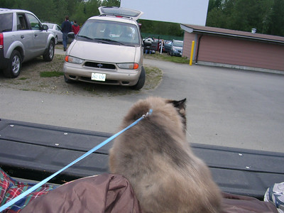 Drive-in Theater with Kassandra and Sigma, 2007